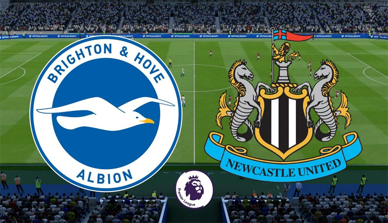 Prediksi Newcastle United Vs Brighton